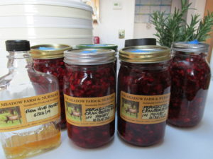 Cranberries Fermented in Honey